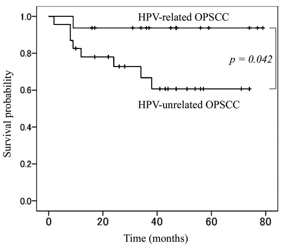 Hpv head and neck cancer survival rates. Chimioterapia intraarterială a cancerelor sferei ORL