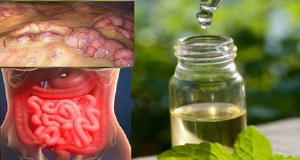 viermi, cum să eliminați rapid toxinele