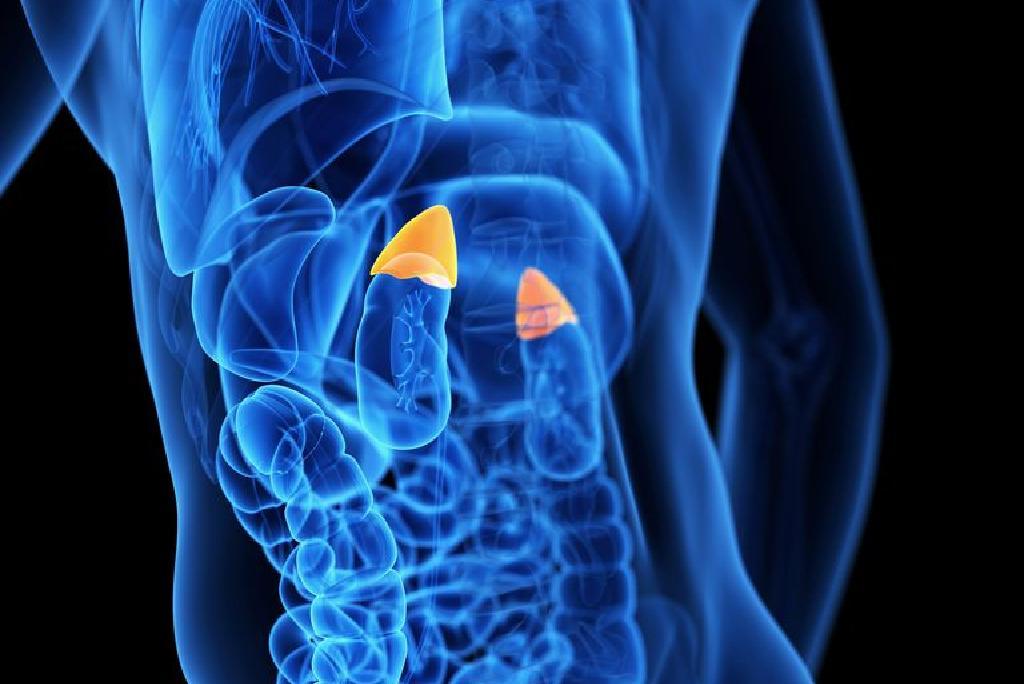 viermii din plămâni sunt simptome ale tratamentului)