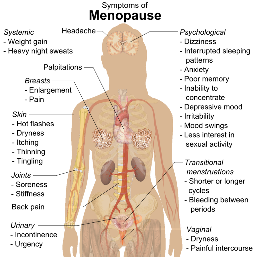 Endometrial cancer lower back pain, Loading...