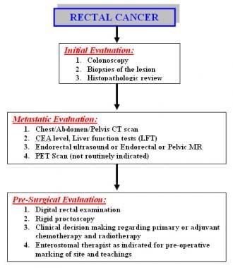 Endometrial cancer emedicine - Cancer endometrial