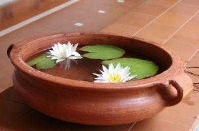 Detoxifierea colonului cu argila,