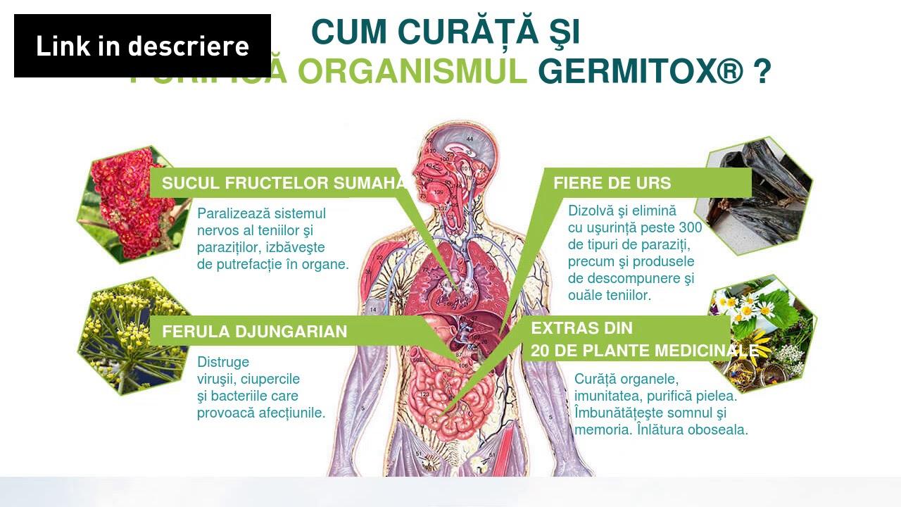 cum să tratezi viermii în organism