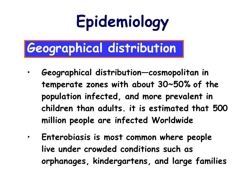 enterobius vermicularis epidemiology