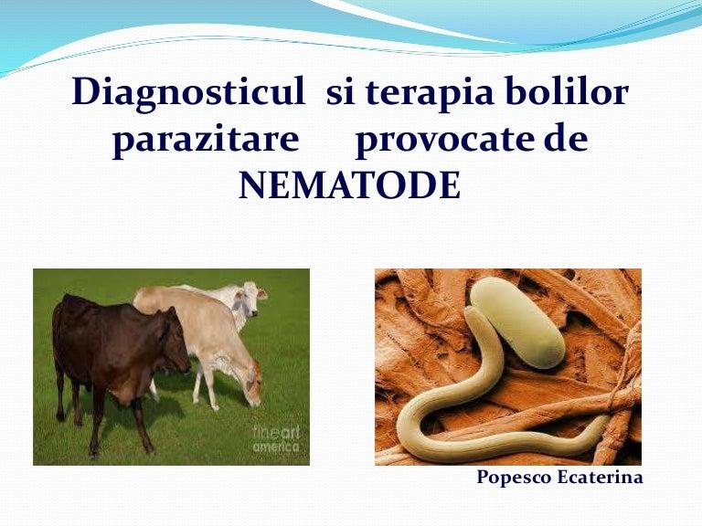 Nematode - Generalitati   Bioclinica