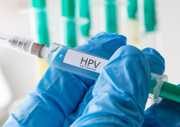 Costo vaccino papilloma virus uomo - transroute.ro
