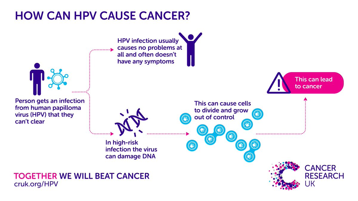 hpv caused cancers toxine proteique