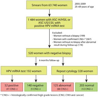 Hpv high risk by tma positive