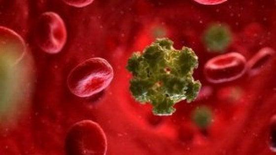 Papilloma virus uomo vaccini,