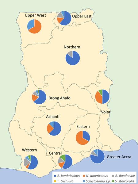 schistosomiasis in ghana